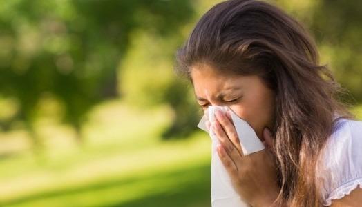 Mivel fűtsön, aki pollenallergiával küzd?